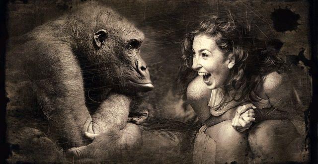 Shut your monkey.